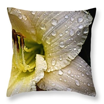 Daylilly 1 Throw Pillow