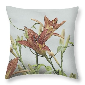 Daylilly Dreaming Throw Pillow