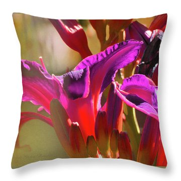 Daylily Abstract Colors - Beauty In The Garden Throw Pillow