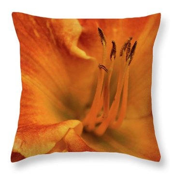 Daylily Close-up Throw Pillow