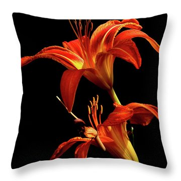 Throw Pillow featuring the photograph Daylily Double by Douglas Stucky