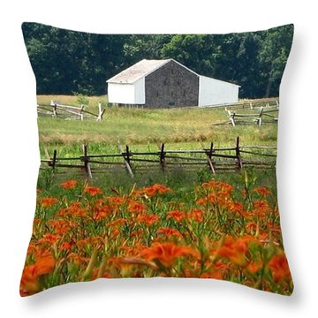 Daylily Drama Throw Pillow