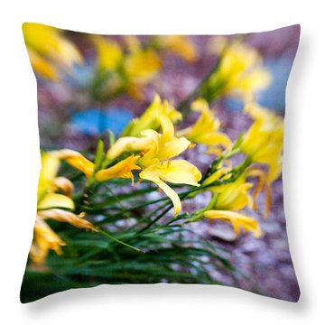 Throw Pillow featuring the photograph Daylily by Erin Kohlenberg