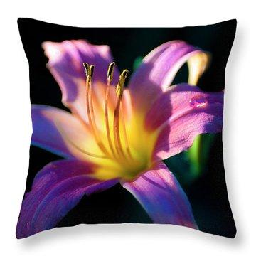 Daylily Glow Throw Pillow by Tamyra Ayles