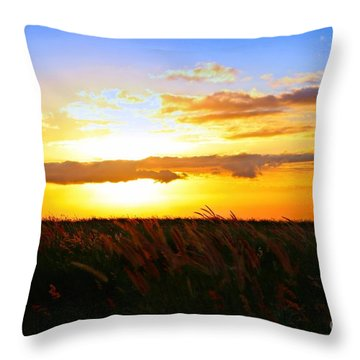 Throw Pillow featuring the photograph Day's End by DJ Florek