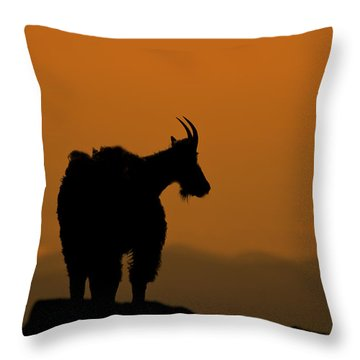 Throw Pillow featuring the photograph Day's End by Gary Lengyel