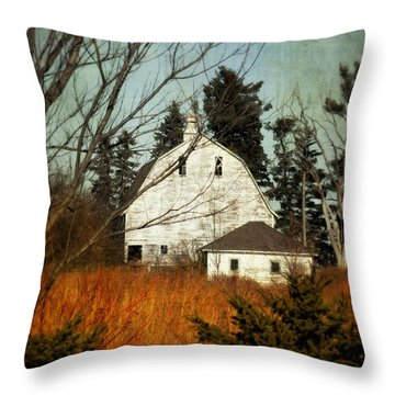 Throw Pillow featuring the photograph Days Gone By by Julie Hamilton