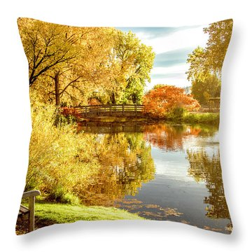 Throw Pillow featuring the photograph Days Last Rays by Kristal Kraft