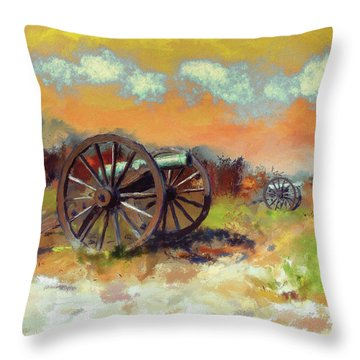 Throw Pillow featuring the photograph Days Of Discontent by Lois Bryan