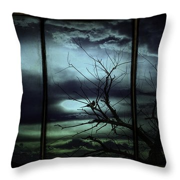 Days Of Future Passed Throw Pillow