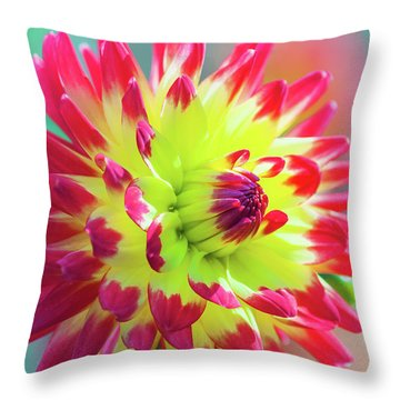Dazzling Dahlia  Throw Pillow