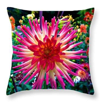 Dazzling Dahlia  Throw Pillow