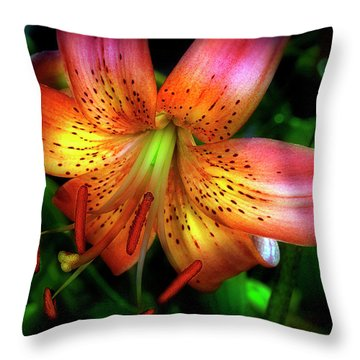 Dazzling Daylily  Throw Pillow