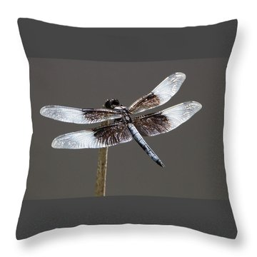 Dazzling Dragonfly Throw Pillow