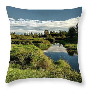 De Boville Slough At Pitt River Dike Throw Pillow