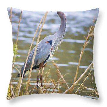 De Leon Springs Blue Throw Pillow by Deborah Benoit