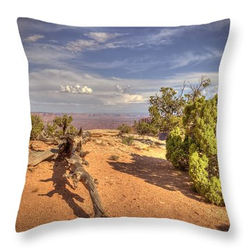 Dead Cedar Canyonlands Throw Pillow