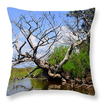 Dead Cedar Tree In Waccasassa Preserve Throw Pillow