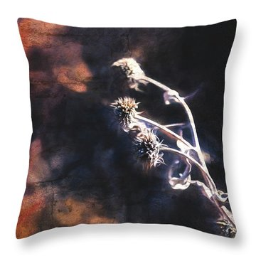 Throw Pillow featuring the photograph Dead Heads by Anna Louise