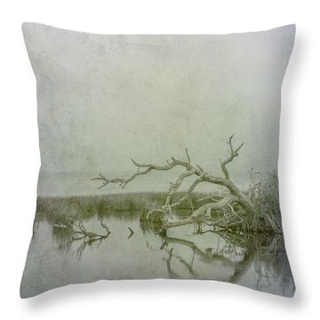 Throw Pillow featuring the digital art Dead In The Water by Randy Steele