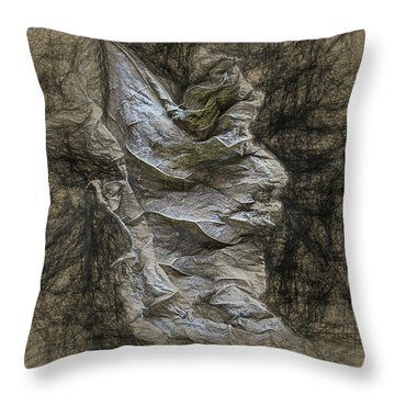 Dead Leaf Throw Pillow
