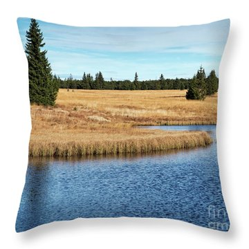 Dead Pond In Ore Mountains Throw Pillow by Michal Boubin