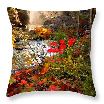 Dead River Falls Foreground Plus Mist 2509 Throw Pillow