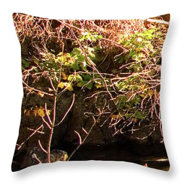 1 Of 6 Dead River Falls  Marquette Michigan Section Throw Pillow by Michael Bessler