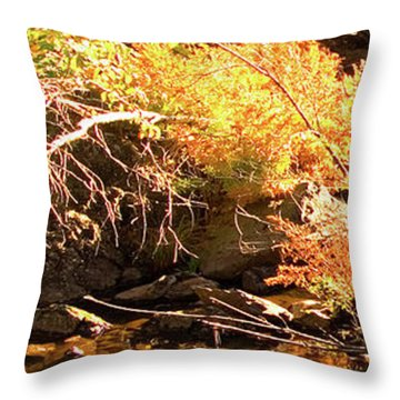 2 Of 6 Dead River Falls  Marquette Michigan Section Throw Pillow