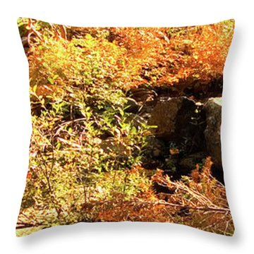 3 Of 6 Dead River Falls  Marquette Michigan Section Throw Pillow