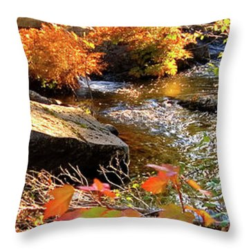 4 Of 6 Dead River Falls  Marquette Michigan Section Throw Pillow