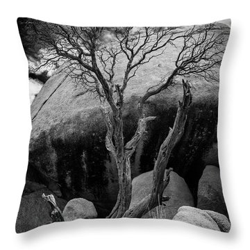 Dead Tree And Boulder At Joshua Tree Throw Pillow