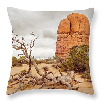 Dead Tree Arches Throw Pillow