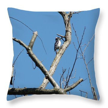 Dead Tree - Wildlife Throw Pillow by Donald C Morgan