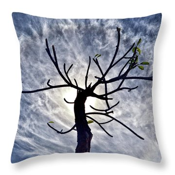 Dead Tree In St. Johns Antigua Throw Pillow