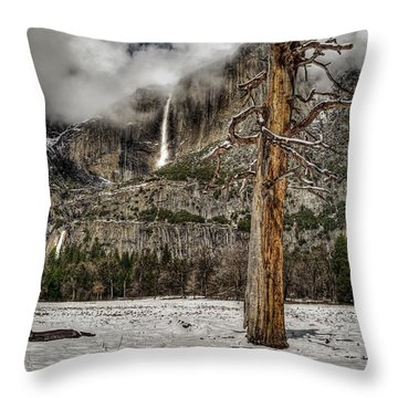 Dead Tree In Yosemite Valley Throw Pillow