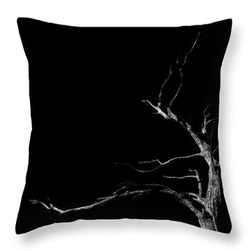 Dead Tree On Black Background Throw Pillow