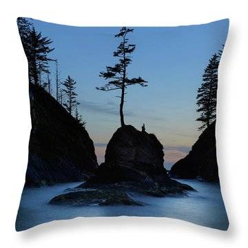 Deadman's Cove At Cape Disappointment At Twilight Throw Pillow
