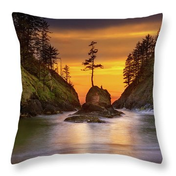 Deadman's Cove At Cape Disappointment State Park Throw Pillow