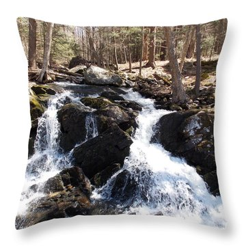 Deans Ravine Throw Pillow