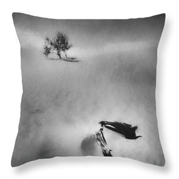 Death Valley 1990 Throw Pillow