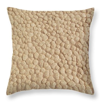 Throw Pillow featuring the photograph Death Valley Mud by Breck Bartholomew