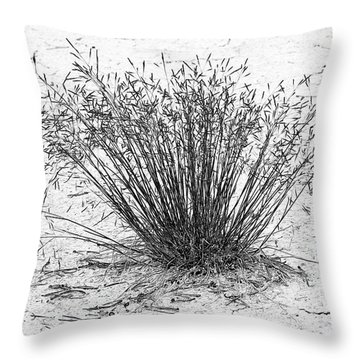 Death Valley National Park - Hot - Dry - Beautiful Throw Pillow by Christine Till