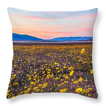 Death Valley Sunset Throw Pillow