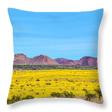 Death Valley Super Bloom 2016 Throw Pillow