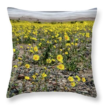 Death Valley Super Bloom Throw Pillow
