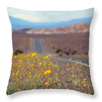Death Valley Superbloom 101 Throw Pillow