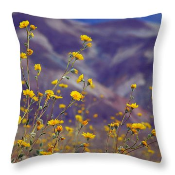 Death Valley Superbloom 103 Throw Pillow