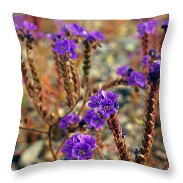 Death Valley Superbloom 106 Throw Pillow