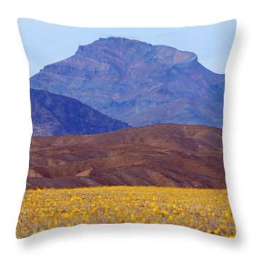 Death Valley Superbloom 201 Throw Pillow